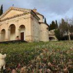 Lucania, Sesta Strofa