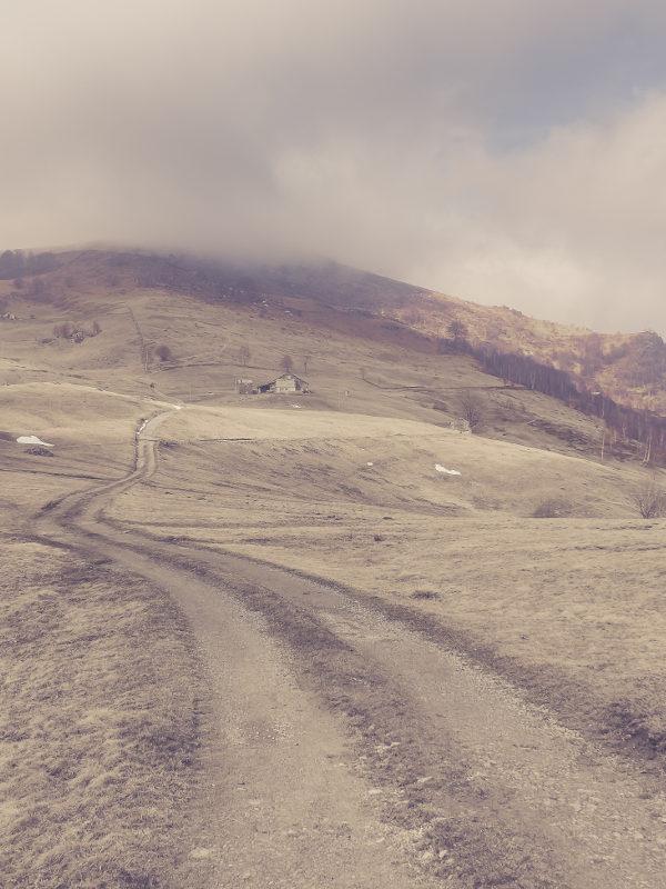 Le salvine - Piemonte