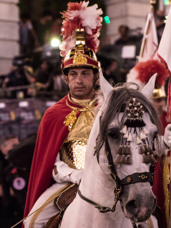 Festa della Bruna - Cavaliere
